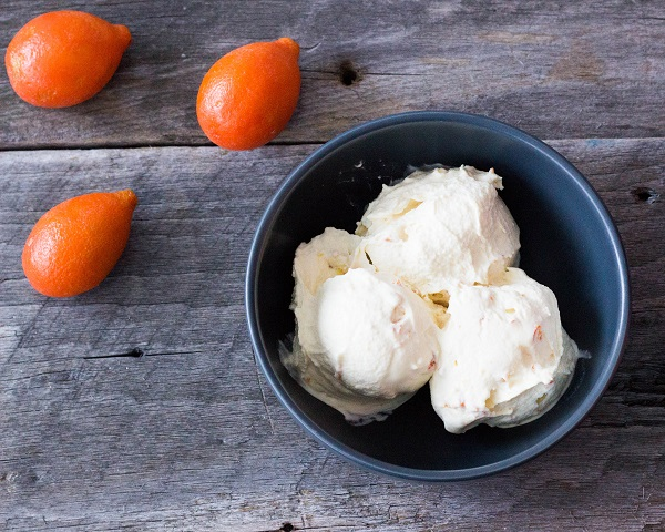 Kumquat Ice Cream