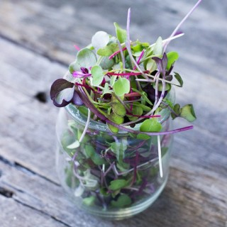 Superfoods 101: Microgreens - Eat Thrive Glow